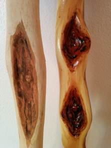 varnished-stick